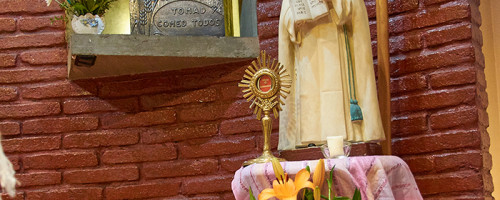 150 años de la Pascua de Santa María Eufrasia Pelletier.