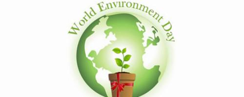 Oración para el 6 de junio: Jornada mundial  del medio ambiente