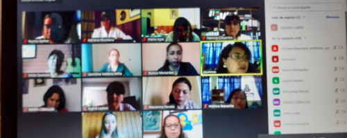 Partners de los colegios en Chile se reúnen vía Zoom